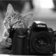 Photographe92