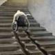 N-handicapman