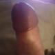 labrat90