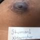 Stuman1