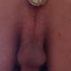 Lav1966
