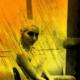 LadyGiuli