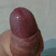 Safado47