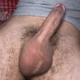 Elvergo98565513 Me