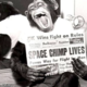 spacechimp64